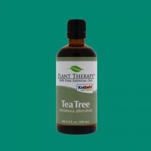 """Tea Tree er ein af vinsælustu og best þekktu olíum heims. Í aldaraðir hefur hún verið notuð sem """"fyrsta hjálp"""" í lyfjaskápum Ástrala."""